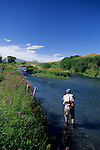 Fly fishing on Depuy's Spring Creek, Paradise Valley, MOntana