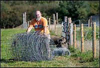 BNPS.co.uk (01202 558833)<br /> Pic: PhilYeomans/BNPS<br /> <br /> Derek is taking out all internal fencing on his 115 acre farm and having a single exterior fence to keep the wild animals in...and the public out.<br /> <br /> Back to the future - A farmer is returning his land back to the Stone Age and reintroducing species of wild animals once extinct in the UK - after becoming disenchanted with 'unsustainable' modern farming techniques.<br /> <br /> Derek Gow is using a herd of Nazi-engineered cows to spearhead his radical rewilding scheme that will create the farming version of Jurassic Park.<br /> <br /> The Heck cows that died out in the Iron Age were re-established in Nazi Germany in the 1930s as part of a genetics programme to create a breed of super cattle.<br /> <br /> Joining them on Mr Gow's 115 acre ring-fenced plot of upland in Devon will be rabbit-eating wildcats, wild boar and beavers.