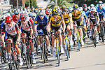 The peloton near the finish of Stage 16 of La Vuelta d'Espana 2021, running 180km from Laredo to Santa Cruz de Bezana, Spain. 31st August 2021.     <br /> Picture: Luis Angel Gomez/Photogomezsport   Cyclefile<br /> <br /> All photos usage must carry mandatory copyright credit (© Cyclefile   Luis Angel Gomez/Photogomezsport)