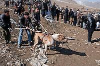 *Kabul Dogfights 12-2-10*