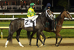 April 25, 2015 Churchill Downs Opening Night.  Blofeld in the post parade of the William Walker Stakes.  Jockey John Velazquez, owner Glencrest Farm, trainer Todd A. Pletcher.  By Quality Road x Storm Minstrel (Storm Cat).  He finished 3rd to Cinco Charlie.  ©Mary M. Meek/ESW/CSM