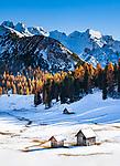 Italien, Suedtirol (Trentino - Alto Adige), Naturpark Fanes-Sennes-Prags:  Hochplateau Plaetzwiesen mit Hohe Gaisl   Italy, South Tyrol (Trentino - Alto Adige), Fanes-Sennes-Prags Nature Park: High Plateau Plaetzwiesen with Croda Rossa mountais