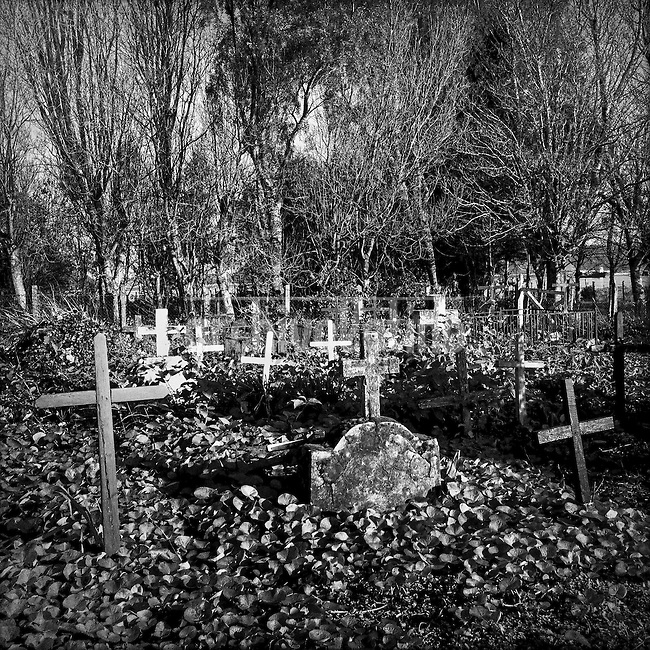 """De la serie """"Lo que aprendí de ti…"""" (herencia visual de dos generaciones) proyecto financiado por Fondart convocatoria 2013.<br /> Cementerio de Puqueldón en Isla Maillen, Región de Los Lagos, Puerto Montt, Chile<br /> Essay made by Sergio Candia and his son, Roberto, about a unknown and isolated island of Souther Chile: Maillen<br /> The name of  Maillen Island comes from  Huilliche Indians,  meaning """"young lady"""",  reminding a legend of a lady brought to the place by Dutch pirates who found a refugee in this remote and isolated  place.<br />  The island is located in the Southern region of  Chile , 45 minutes from Puerto Montt city by boat, the only link with the rest of the world.   The island , unknown for  most Chileans, has about 1,000 inhabitants  who make a a living basically from  agriculture, fisheries and some minor scale cattle breading.<br /> Dweller are mostly  elder people. Youngs preffer to look for some better luck elsewhere.<br /> Maillen has no doctors, no police either. The only authority is man designed as  Sea  Mayor."""