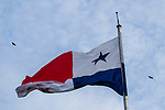 American Black Vulture (Coragyps atratus) pair flying over panamanian flag, Ancon Hill, Panama City, Panama