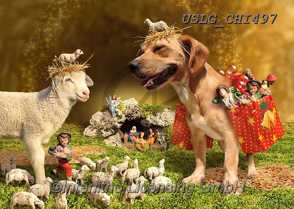 CHIARA,CHRISTMAS ANIMALS, WEIHNACHTEN TIERE, NAVIDAD ANIMALES, paintings+++++,USLGCHI497,#XA# ,funny ,funny