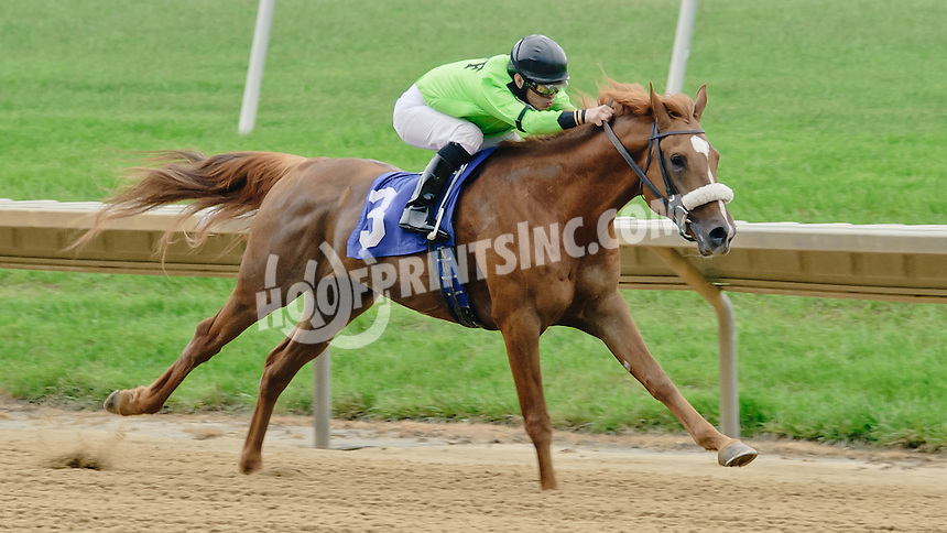 Quick and Rich winning at Delaware Park racetrack on 5/21/14