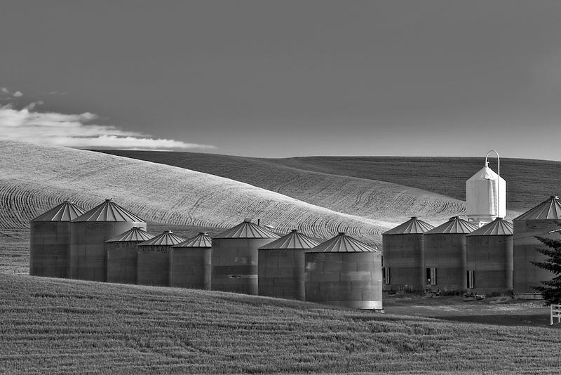 Grain silos and wheat field. the Palouse, Washington