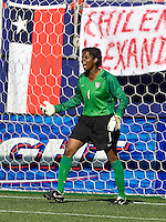 Briana Scurry gives directions to teammates. USA defeated Brazil 2-0 at Giants Stadium on Sunday, June 23, 2007.