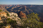 Morning view from Pima Point, South Rim in Grand Canyon National Park, Arizona. .  John offers private photo tours in Grand Canyon National Park and throughout Arizona, Utah and Colorado. Year-round.
