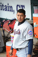 Binghamton Mets infielder Wilfredo Tovar (2) during game against the New Britain Rock Cats at New Britain Stadium on May 23 2013 in New Britain, Connecticut.  New Britain defeated Binghamton 1-0.  Tomasso DeRosa/Four Seam Images