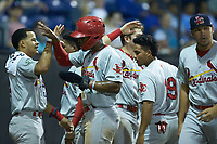 Todd Lott (29) of the Johnson City Cardinals is greeted by teammates after scoring a run during the game against the Burlington Royals at Burlington Athletic Stadium on September 4, 2019 in Burlington, North Carolina. The Cardinals defeated the Royals 8-6 to win the 2019 Appalachian League Championship. (Brian Westerholt/Four Seam Images)
