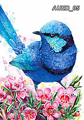 Carlie, REALISTIC ANIMALS, REALISTISCHE TIERE, ANIMALES REALISTICOS, paintings+++++Blue-Fairy-Wren,AUED05,#A#, EVERYDAY ,australian wildlife