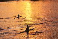 Rowing, Charles river, Harvard