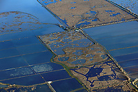 aerial photograph of wetlands and adjacent flooded rice farming fields in the California Central Valley in winter, a flock of birds rests in flooded fields at left