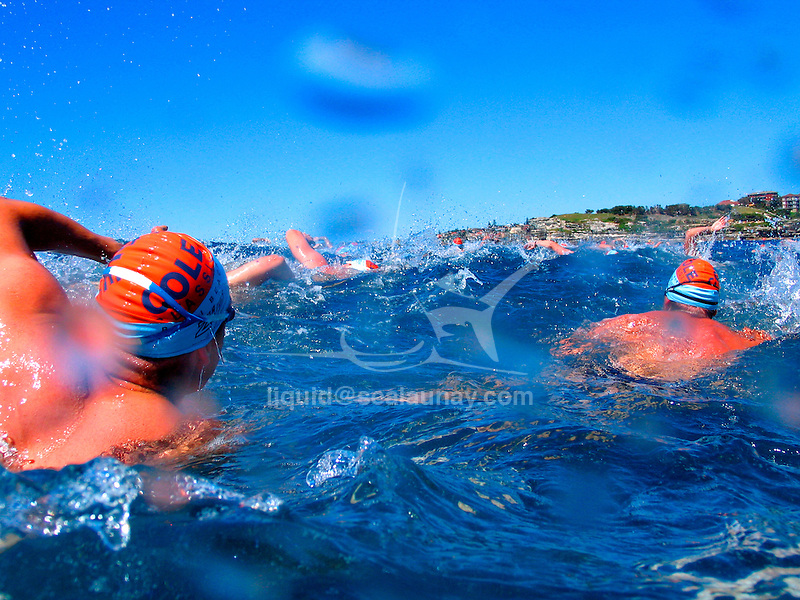 One of Australia's longest running and most prestigious ocean swims, the Cole Classic 2004 at North Bondi, Sydney..Thousands of swimmers gather at North Bondi to compete in either a 1km or 2km swim. This truly iconic event is a challenge for people to swim a reasonable distance through the surf, taking courage and determination. .Swimming (aquatic locomotion) is biologically propelled motion through a liquid medium. Swimming has evolved a number of times in a range of organisms ranging from arthropods to fish to molluscs.One of Australia's longest running and most prestigious ocean swims, the Cole Classic 2004 at North Bondi, Sydney..Thousands of swimmers gather at North Bondi to compete in either a 1km or 2km swim. This truly iconic event is a challenge for people to swim a reasonable distance through the surf, taking courage and determination. .Swimming (aquatic locomotion) is biologically propelled motion through a liquid medium. Swimming has evolved a number of times in a range of organisms ranging from arthropods to fish to molluscs.