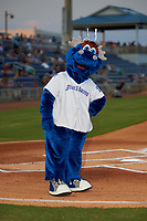 Pensacola Blue Wahoos mascot Kazoo before a Southern League game against the Mobile BayBears on July 25, 2019 at Blue Wahoos Stadium in Pensacola, Florida.  Pensacola defeated Mobile 3-2 in the second game of a doubleheader.  (Mike Janes/Four Seam Images)