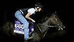 OCT 25: Breeders' Cup Dirt Mile entrant Omaha Beach, trained by Richard E. Mandella, gallops at Santa Anita Park in Arcadia, California on Oct 25, 2019. Evers/Eclipse Sportswire/Breeders' Cup