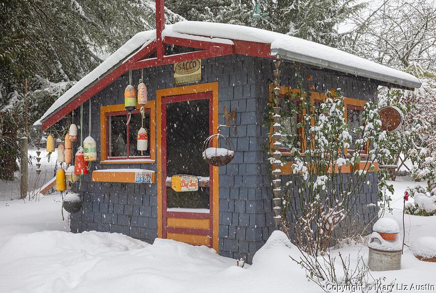 Vashon-Maury Island, Washington: Winter, snow covered garden shed