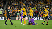 22nd September 2021; Molineux Stadium, Wolverhampton,  West Midlands, England; EFL Cup football, Wolverhampton Wanderers versus Tottenham Hotspur; Fabio Silva of Wolverhampton Wanderers with his arms out to Referee Peter Bankes after a tackle on Japhet Tanganga of Tottenham Hotspurs