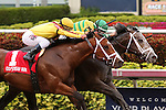 HALLANDALE BEACH, FL - MARCH 05:       #4 Blofeld (KY) with jockey John Velazquez on board keeps #1 Stanford with Javier Castellano up at bay and  wins the 76th running of the Gulfstream Park Handicap G2 at Gulfstream Park on March 5th, 2016 in Hallandale Beach, Florida. (Photo by Liz Lamont)