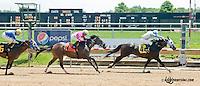 Victoryoutothegate winning at Delaware Park on 6/29/13