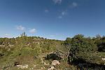 Israel, Jerusalem Mountains. Har Haruach, the Mountain of Wind