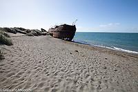 Chile, san gregorio Beech the wreck El Amadeo,