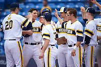 Michigan Wolverines first baseman Carmen Benedetti (43) high fives teammates after scoring a run during the first game of a doubleheader against the Canisius College Golden Griffins on June 20, 2016 at Tradition Field in St. Lucie, Florida.  Michigan defeated Canisius 6-2.  (Mike Janes/Four Seam Images)