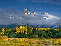 749450298 clouds from a clearing autumn storm partially hide the teton range with fall colored aspens and fir trees in the foreground from blacktail ponds in grand tetons national park wyoming