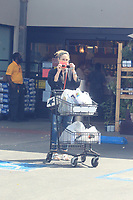 Zoe Perry Grabs Her Groceries In Hollywood
