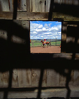 Looking through old barn window at cowboy roping cattle in Jefferson County, Oregon