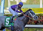 26 Feb 11: Flashpoint and jockey Cornelio Velasquez win the Hutcheson Stakes at Gulfstream Park in Hallandale Beach, Florida