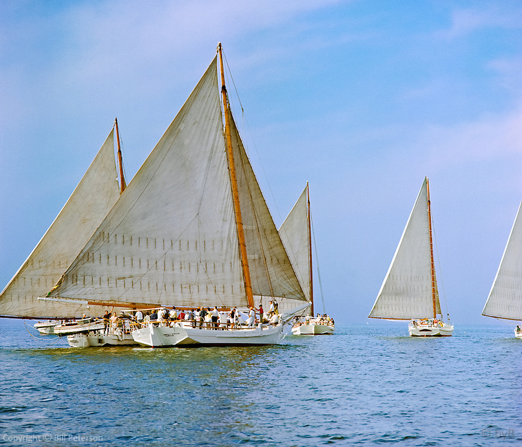 """The 1967 Deal Island Skipjack Race in all its splendour.  """"Racing"""" is the heart of the exhibition in our Fine Art, Limited Edition """"Skipjack Sunday"""" collection."""