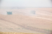 Washington State<br /> September 17, 2020<br /> <br /> Agriculture in central Washington State under heavy smoke from wild-fires burning.