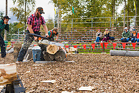 Lumberjack compete in contest at the Alaska State Fair, Palmer, Alaska.