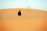Desertification In China [2008-2021]