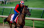 LOUISVILLE, KY - MAY 02: Wonder Gadot works out on the track in preparation for the Kentucky Oaks at Churchill Downs on May 2, 2018 in Louisville, Kentucky. (Photo by John Vorhees/Eclipse Sportswire/Getty Images)