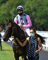 Winner of The AJN Steelstock Henstridge Apprentice Handicap Juanito Chico middle ridden by Rhys Clutterbuck and trained by Michael Attwater is led into the Winners enclosure during Horse Racing at Salisbury Racecourse on 9th August 2020