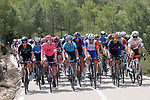 The peloton during Stage 6 of La Vuelta d'Espana 2021, running 158.3km from Requena to Alto de la Montaña Cullera, Spain. 19th August 2021.    <br /> Picture: Luis Angel Gomez/Photogomezsport   Cyclefile<br /> <br /> All photos usage must carry mandatory copyright credit (© Cyclefile   Luis Angel Gomez/Photogomezsport)