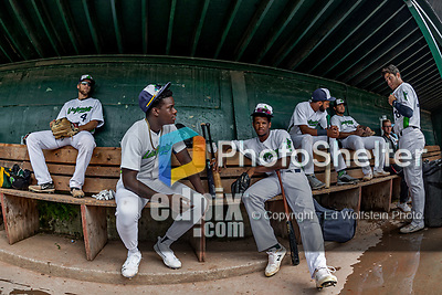 21 July 2019: Members of the Vermont Lake Monsters sit in the dugout prior to a game against the Tri-City ValleyCats at Centennial Field in Burlington, Vermont. The Lake Monsters rallied to defeat the ValleyCats 6-3 in NY Penn League play. Mandatory Credit: Ed Wolfstein Photo *** RAW (NEF) Image File Available ***