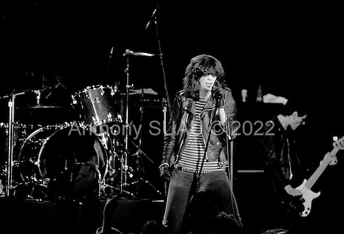 """Denver, Colorado<br /> USA<br /> May 9, 1983<br /> <br /> Front man of the Ramones singer: Joey Ramone (center), and basist: Dee Dee Ramone.<br /> <br /> The Ramones were an American rock band that formed in Forest Hills, Queens, New York in 1974, often cited as the first punk rock group. Despite achieving only limited commercial success, the band was a major influence on the punk rock movement both in the United States and the United Kingdom.<br /> <br /> All of the band members adopted pseudonyms ending with the surname """"Ramone"""", though none of them were actually related. They performed 2,263 concerts, touring virtually nonstop for 22 years. In 1996, after a tour with the Lollapalooza music festival, the band played a farewell show and disbanded.<br /> <br /> By a little more than eight years after the breakup, the band's three founding members--lead singer Joey Ramone, guitarist Johnny Ramone, and bassist Dee Dee Ramone--had all died."""