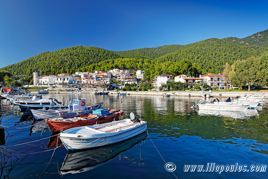 The port in Hovolo of Skopelos island, Greece