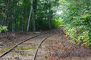 This is the location of where the old Bartlett and Albany Railroad joined into the Maine Central Railroad in Bartlett, New Hampshire USA. The Bartlett and Albany was a logging railroad in operation from 1887 - 1894.