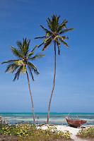 Jambiani, Zanzibar, Tanzania.  Two Palm Trees, Indian Ocean in Background.  Zanzibar's Eastern Shore.