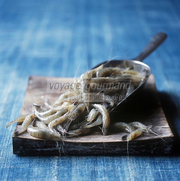 Europe/France/Picardie/80/Somme:  Crevette grise de la baie de  Somme - Stylisme : Valérie LHOMME