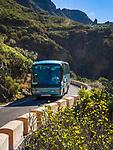 Spanien, Kanarische Inseln, Teneriffa, Bus unterwegs auf engen Strassen nach Masca im Teno Alto Gebirge | Spain, Canary Islands, Tenerife, bus on narrow road heading for Masca in Teno Alto mountains