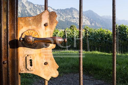 Switzerland. Old metal door handle in gate to vineyards with mountains.