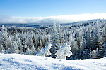 Washington, Chewelah Mountain. A snow berm along Flowery Trail road and frost covered trees of the Colville National Forest in winter.