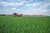 Applying fungicide to winter wheat  - Lincolnshire; June