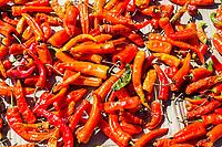 Punakha, Bhutan.  Bright red chili peppers, Lobeysa Market.